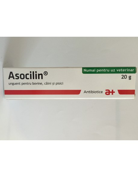 Asocilin 20g - Unguent