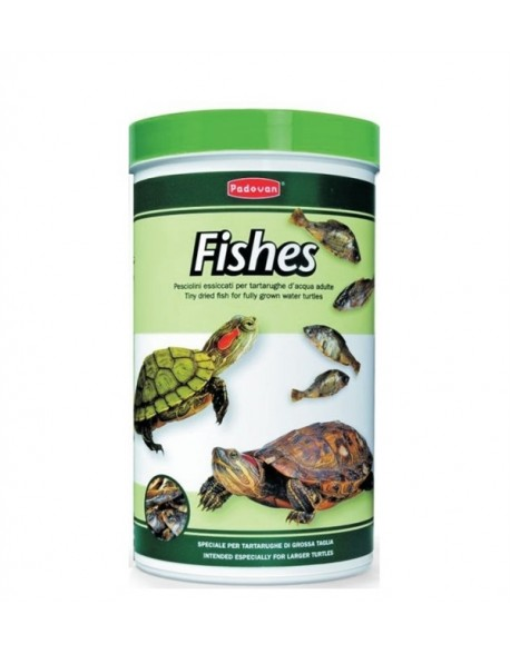 Padovan Fishes 160gr/1L