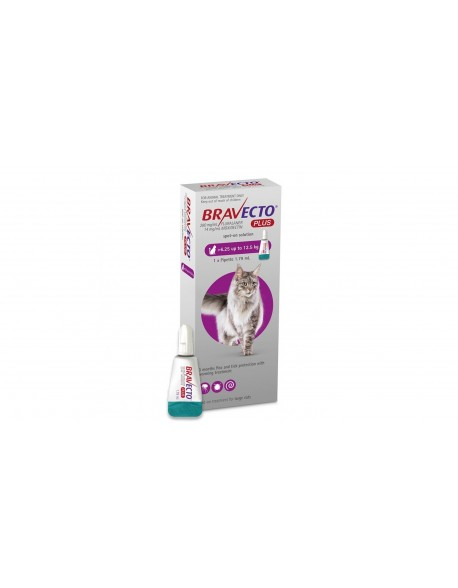 Bravecto Plus Spot On Cat 500 mg (6.25 - 12.5 kg)