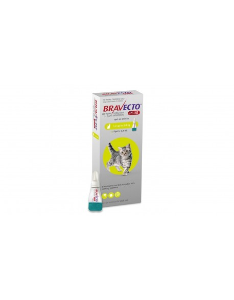 Bravecto Plus Spot On Cat 112.5 mg (1.2 - 2.8 kg)